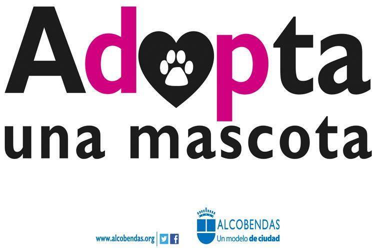 En Alcobendas: 'Adopta una mascota'