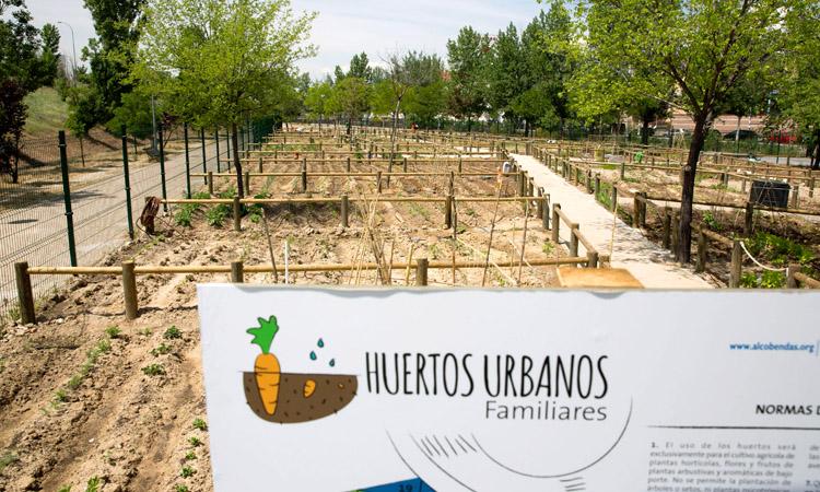 Más de 800 solicitudes para los huertos urbanos de Alcobendas
