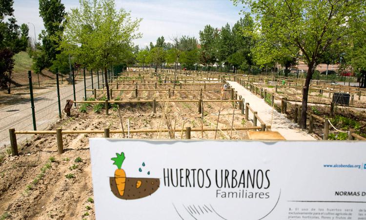 Nuevo sorteo de 123 huertos urbanos en Alcobendas