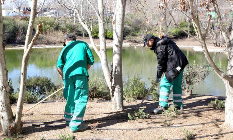 21 desempleados de larga duración para el mantenimiento de zonas verdes de Alcobendas