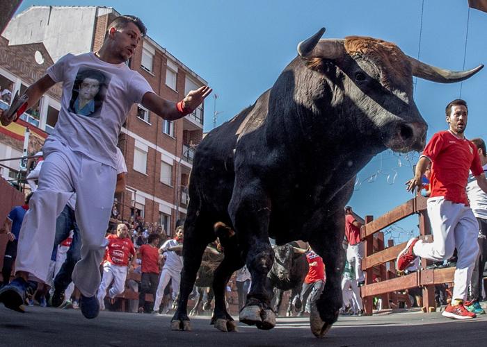 El Pleno de San Sebastián de los Reyes apoya la celebración de unas Fiestas del Santísimo Cristo de los Remedios Seguras